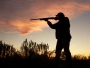 Meaningless or dangerous? Hunting and fishing constitutional amendment raises huge questions