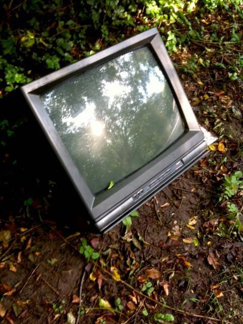 Senate panel advances controversial bid to allow dumping of toxic electronics in landfills   NC Policy Watch