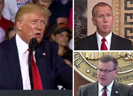 Friday Follies: The tangled tentacles of Trumpism   NC Policy Watch
