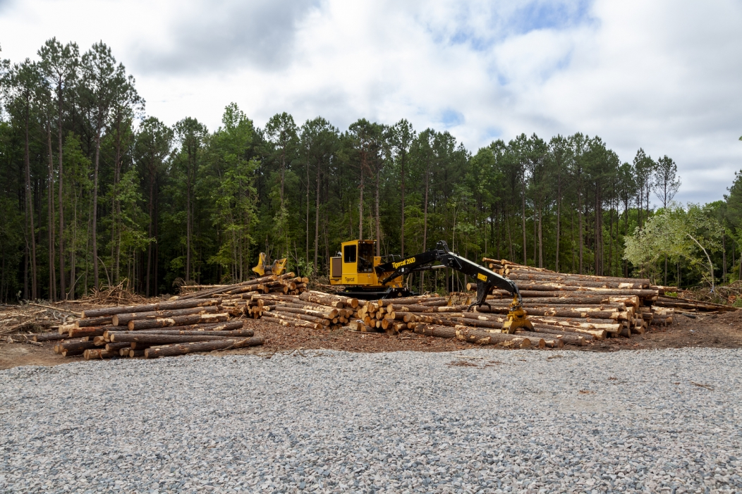 State Fair exploits legal loopholes to clear-cut 19 acres of forest for a parking lot